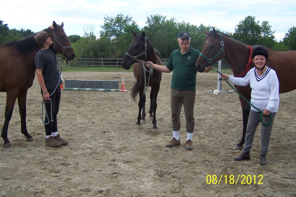 Three Bits & Bytes Farm horses in the Dixon family stable of Thoroughbreds