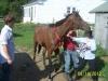 Give me MY horse Tony!#%@!