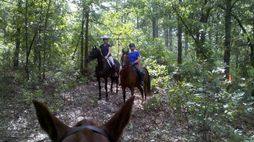 Bounced Trail Ride 20100925