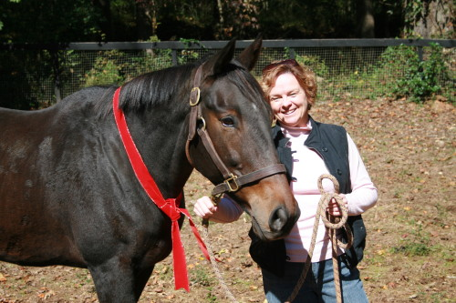 Jodi's first horse is an off-the-track Thoroughbred