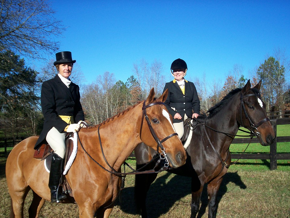 Off-the-track Thoroughbred, Christian's Hope at the Thanksgiving Fox Hunt