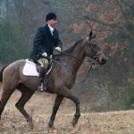 Rap It Up - from race horse to foxhunter