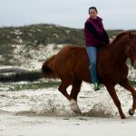 LIght Artillery galloping on the beach