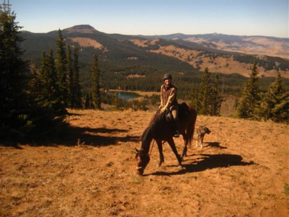 Trail Riding Off-the-Track Thoroughbred Tillo in Colorado