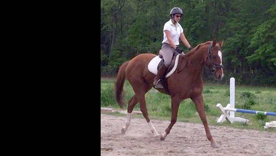 OTTB - Breaking Free in Georgia!